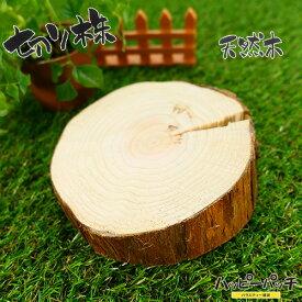 天然木の台座 ディスプレイスタンド スギの木 切り株 約11cm 厚め 約4cm 木製 MD-023 杉の木 皮付き 日本製 あす楽 宅配便のみ