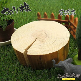 天然木の台座 ディスプレイスタンド スギの木 切り株 約10.5cm 厚め 木製 MD-038 杉の木 皮なし 日本製 あす楽 宅配便のみ