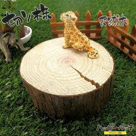 天然木の台座 ディスプレイスタンド スギの木 切り株 約9.5cm 厚め 木製 MD-041 杉の木 皮付き 日本製 あす楽 宅配便のみ