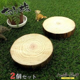 天然木の台座 ディスプレイスタンド 2個セット スギの木 切り株 約8.5cm 木製 MD-045 杉の木 皮付き 日本製 あす楽 メール便OK