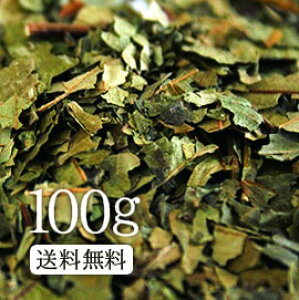 テン茶100g 上品な甘さを家族で愛飲!【健康】【健康茶/お茶】テン茶