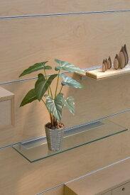 【送料無料】光触媒 観葉植物 光の楽園フィロデンドロン【フェイクグリーン 人工観葉植物】