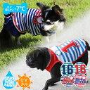 《あす楽/ネコポス配送》LOOKY ルッキークーリング Girls Boys グリーン×ボーダー ネイビー×ボーダー レッド×ボーダー(大型犬/中型犬/小型犬/超小型犬)(犬用 服 ひんやり 夏 ウェ