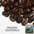 【オーガニックコーヒー】HIROCOFFEE◆オーガニック・グァテマラセイラン農園100g