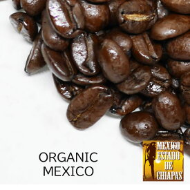 ポイント10倍!オーガニックコーヒー 豆 (有機JAS)スペシャルティコーヒー シングルオリジン 【オーガニックメキシコ 100g】