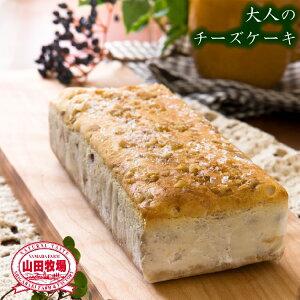 【山田牧場チーズケーキ】 贅沢チーズケーキ 〜ナッツ&フルーツ〜 ワインによく合う 大人のチーズケーキ (約2〜3人用) (冷凍便)