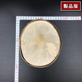 丸太のディスプレイテーブル [PM0001][輪切り]