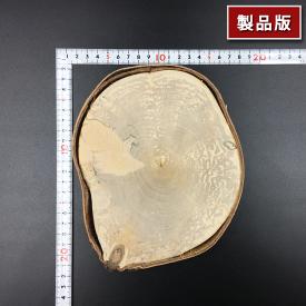 丸太のディスプレイテーブル [PM0002][輪切り]