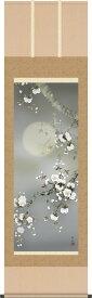 掛軸 掛け軸-夜桜/緒方葉水(尺五)床の間 和室 モダン おしゃれ 日本製 ギフト 表装 壁飾り 四季 花鳥画掛軸 [送料無料]