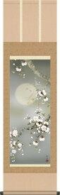 春掛 掛け軸-夜桜/緒方葉水(尺三)床の間 和室 モダン オシャレ インテリア ギフト かけじく 表装 壁掛け 小さい