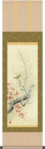 掛け軸 掛軸-紅白梅に鶯/田村 竹世(尺三 化粧箱)和室、床の間に飾る モダンに掛物を吊るす [送料無料]