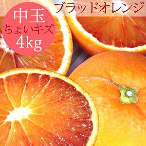 愛媛県産【国産ブラッドオレンジ】訳あり【中玉4キロ】【ちょいキズ】【送料無料】4kg 果物 フルーツ p5