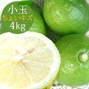ポイント5倍【愛媛県大三島産】国産レモン【小玉4kg(約46玉)】キズ 【ノーワックス・減農薬・防腐剤不使用】訳あり …