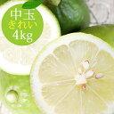 ポイント5倍【愛媛県大三島産】国産レモン【中玉4kg(約28〜36玉)】きれい 【ノーワックス・減農薬・防腐剤不使用】…