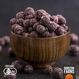 有機 JAS 認証 オーガニック 冷凍 ワイルド ブルーベリー 野生種 1kg カナダ産 無糖 無添加 砂糖不使用 ワイルドブルーベリー 高品質 冷凍フルーツ