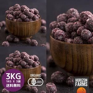 送料無料 冷凍 有機 JAS オーガニック ワイルドブルーベリー 1kg x 3 合計3kg 無糖 無添加 砂糖不使用 カナダ産 野生種 ワイルド ブルーベリー 冷凍フルーツ 冷凍果物 冷凍果実 業務用