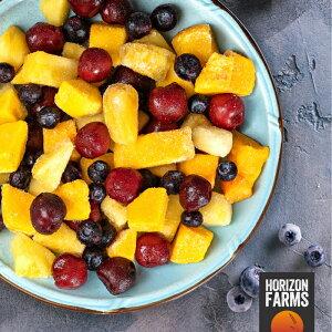 有機 JAS 認証 オーガニック 冷凍 トロピカルフルーツ ミックス 1kg 砂糖不使用 マンゴー パイナップル ブルーベリー スイートダークチェリー 入り
