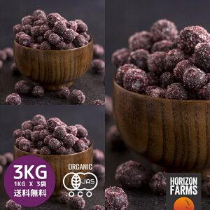 冷凍 有機 JAS オーガニック ワイルドブルーベリー 1kg x 3 合計3kg 無糖 無添加 砂糖不使用 カナダ産 ワイルド ブルーベリー 冷凍フルーツ 冷凍果物 冷凍果実 業務用