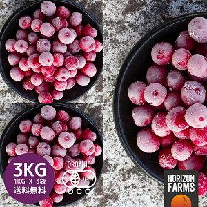 冷凍 有機 JAS オーガニック サワーチェリー 1kg x 3 合計3kg 無糖 無添加 砂糖不使用 トルコ産 冷凍フルーツ 冷凍果物 冷凍果実 業務用