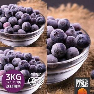 冷凍 有機 JAS オーガニック ブルーベリー 1kg x 3 合計3kg 無糖 無添加 砂糖不使用 チリ産 冷凍フルーツ 冷凍果物 冷凍果実 業務用
