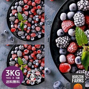 冷凍 有機 JAS オーガニック ミックスベリー 1kg x 3 合計3kg 無糖 無添加 砂糖不使用 チリ産 冷凍フルーツ 冷凍果物 冷凍果実 業務用 送料無料 ブルーベリー イチゴ ストロベリー ラズベリー ブ