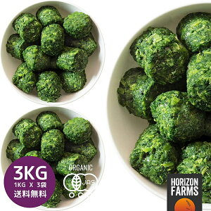 冷凍 有機 JAS オーガニック ケール キューブ 1kg x 3 合計3kg オランダ産 冷凍野菜 無糖 無添加 砂糖不使用 業務用