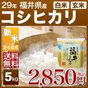 福井県産 コシヒカリ 5kg 送料無料(28年産 特A 米/明日楽) 玄米のお米/精米(白米) 対応可 例年、特A米も産出する福井…
