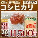 香川県産 讃岐米 こしひかり 30kg 送料無料(28年産 米/明日楽) 玄米のお米/精米(白米) 対応可 西日本の米、四国のさぬ…