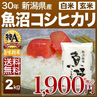 新潟県 魚沼産コシヒカリ 米 2kg 送料無料 29年産の(玄米)又は(白米/精米) 食べ比べサイズのお米