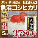 新米 29年 新潟県 魚沼産コシヒカリ 5kg 送料無料(29年産 米/あす楽)29年度産のお米 玄米/精米(白米)対応 例年、食味…