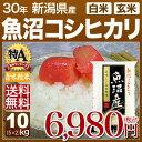 新米 29年 新潟県 魚沼産コシヒカリ 10kg 送料無料(29年産 米 5kg×2/あす楽)29年度産のお米 玄米/精米(白米)対応 例…