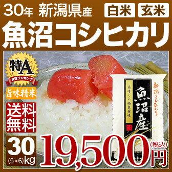 新潟県 魚沼産コシヒカリ 米 30kg(5kg×6)送料無料 29年産の(玄米)又は(白米) 内祝いやお返し、ギフトに熨斗(のし)名入れ 可
