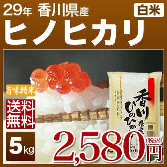 香川 ヒノヒカリ 米 5kg 送料無料 29年産の(白米) 内祝いやお返し ギフトに熨斗(のし)名入れ 可