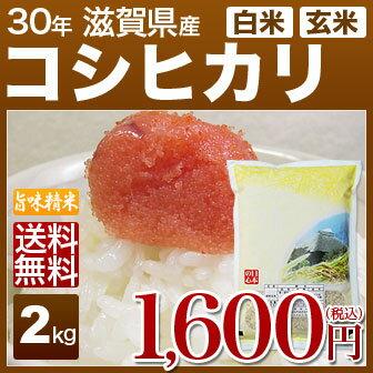 新米 30年産 滋賀県 近江米 コシヒカリ 2kg 送料無料 米(玄米)又は(白米/精米) 食べ比べサイズのお米