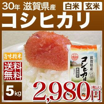 新米 30年産 滋賀県 近江米 コシヒカリ 5kg 送料無料 米(玄米)又は(白米/精米) 内祝いやお返し ギフトに熨斗(のし)名入れ 可