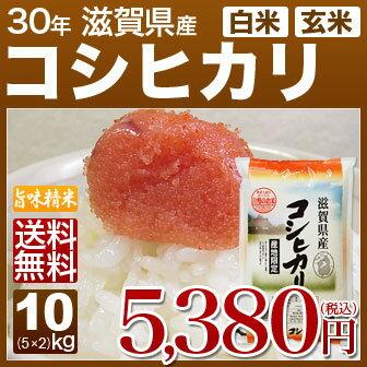 新米 30年産 滋賀県 近江米 コシヒカリ 10kg(5kg×2)送料無料 米(玄米)又は(白米/精米) 内祝いやお返し、ギフトに熨斗(のし)名入れ 可