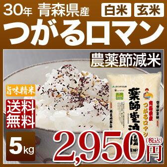 青森県 つがるロマン 減農薬 米 5kg 送料無料 29年産の(玄米)又は(白米) 内祝いやお返し ギフトに熨斗(のし)名入れ 可