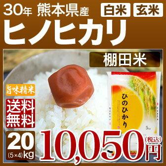 新米 30年産 熊本県 ヒノヒカリ 棚田米 20kg(5kg×4)送料無料 (玄米)又は(白米/精米) 内祝いやお返し、ギフトに熨斗(のし)名入れ 可