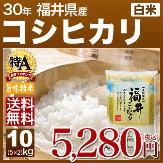 新米 30年産 福井県産 コシヒカリ 米 10kg(5kg×2)送料無料 (白米/精米) 内祝いやお返し、ギフトに熨斗(のし)名入れ (お歳暮 歳暮 御歳暮)可