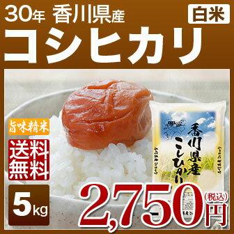 香川県 讃岐米 こしひかり 5kg 送料無料 29年産の(白米) 内祝いやお返し ギフトに熨斗(のし)名入れ 可