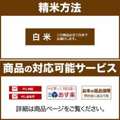 (白のみ/熨斗/あす楽/返品)