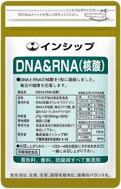 【9月16日までポイント20倍】DNA&RNA(核酸) 300mg×90粒 サケ白子抽出DNA核酸&トルラ酵母抽出RNA核酸で体内サイクルをサポート 約30日分サプリメント DNA&RNA(核酸) インシップ