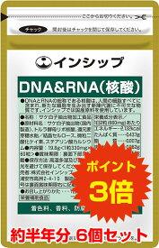 【送料無料!ポイント3倍!】 DNA&RNA(核酸) 6個セット 体内サイクルのサポートに!健康維持の強い味方 約180日分サプリメント DNA&RNA(核酸) 6個セット インシップ