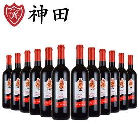ワインセット 送料無料 12本 テッラ・フレスカ ロッソ イタリア 赤ワイン メルロ