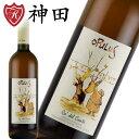 カ・デル・コンテ オプルス 酸化防止剤 無添加 オーガニック ビオ ワイン イタリア 白