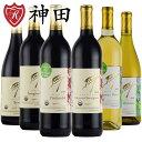 酸化防止剤無添加ワイン 6本 セット カルフォルニア 産 品種別 飲み比べ フレイヴィンヤード オーガニックワイン ヴィーガン 送料無料