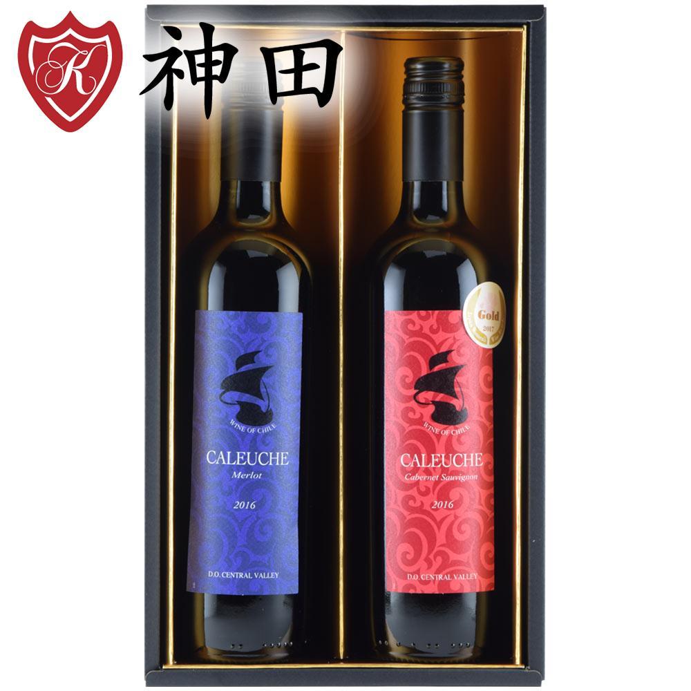 チリ産 赤 ワイン ギフト 2本 セット 送料無料 金賞 ワイン 入り 750mlx2本 ホワイトデー