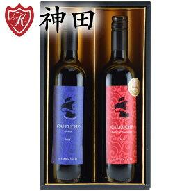 父の日 プレゼント チリ産 赤 ワイン ギフト 2本 セット 送料無料 金賞 ワイン 入り 750mlx2本