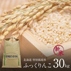 特別栽培 ふっくりんこ 玄米 30kg×1袋 令和2年 北海道米 特A ふっくりんこ 玄米 減農薬 特別栽培米 玄米 30kg まとめ買い 北海道 きなうすファーム 農家直送 【送料無料】 ※玄米のまま発送しま