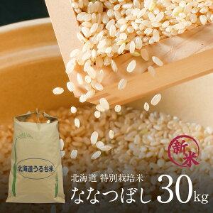新米 特別栽培米 ななつぼし 玄米 30kg×1袋 令和2年 北海道米 特A ななつぼし 玄米 減農薬 特別栽培 玄米 30kg(1袋) 北海道 きなうすファームのお米 【送料無料】 ※このお米は玄米での販売です